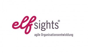 Logo unseres Gold Sponsors elfsights